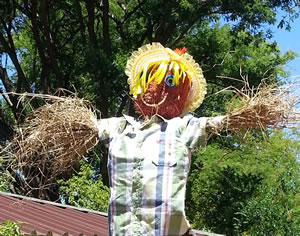 Fun gardening activities for kids making a scarecrow for for Fun vegetable garden ideas