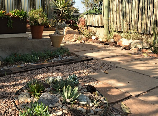 Drought tolerant landscaping & garden designs with indigenous plants