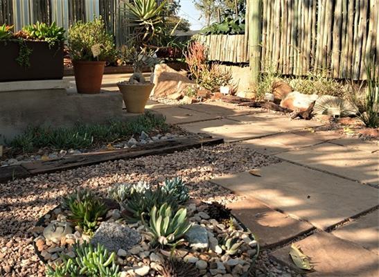 Indigenous plant nursery muldersdrift guest house for Garden designs south africa