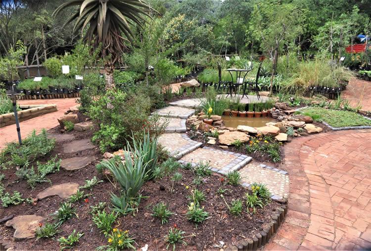Create A Small Bird Friendly Garden Using Indigenous Plants